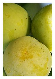 gelbe Pflaumen